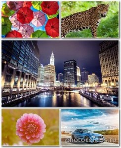 Best HD Wallpapers Pack №1176