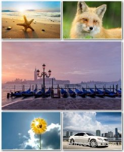 Best HD Wallpapers Pack №1185