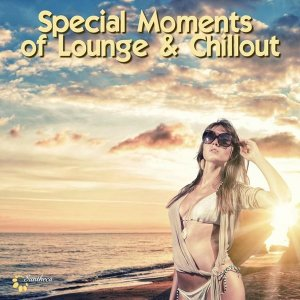 Special Moments of Lounge & Chillout (2014) MP3
