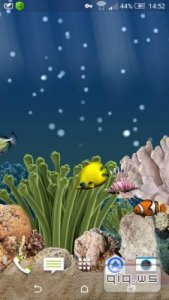 Aquarium 3D Live Wallpaper Premium v1.6.2 [Rus/Android]