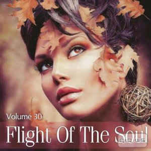 Flight Of The Soul Vol.30 (2015)