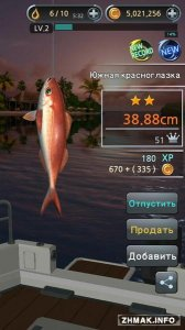 Fishing Hook 1.2.2 (Android)
