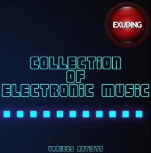 Collection of Electronic Music (2016)