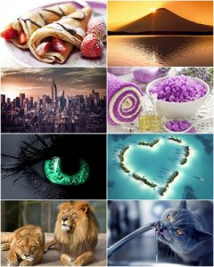 320 Beautiful wallpapers on various topics (#50)