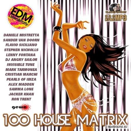100 House Matrix (2017)