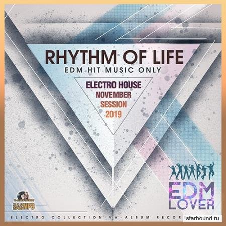 Rhythm Of Life: Electro House Session (2019)